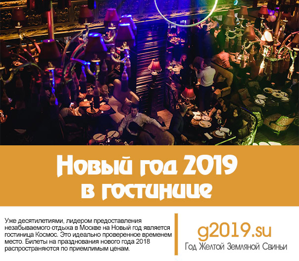 New Year 2019 in the hotel